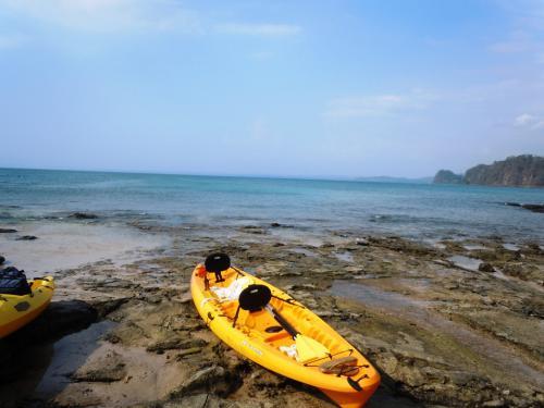 Kayak Ocean Adventure