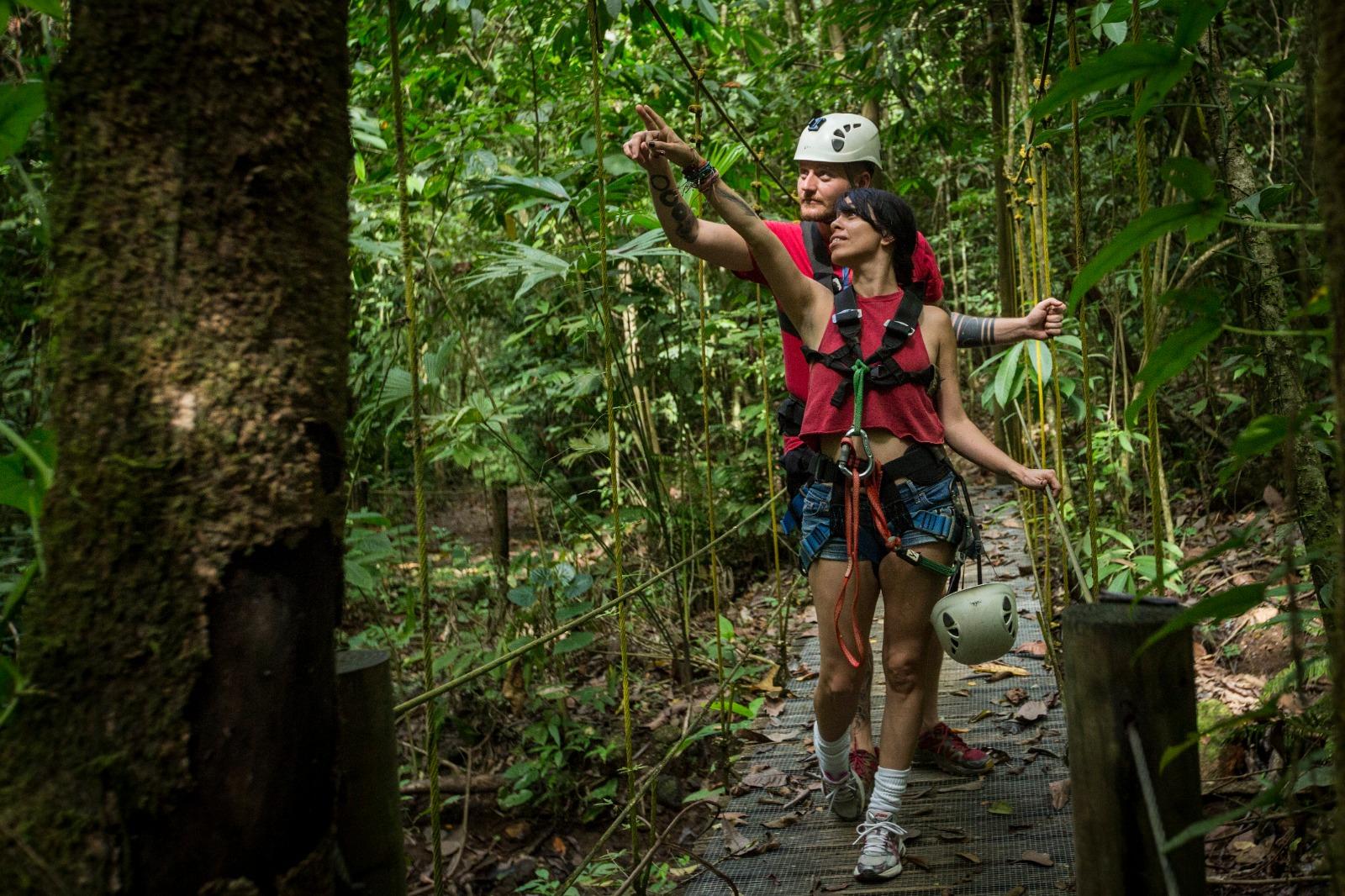 Aerial Tram Rainforest Adventure (11)