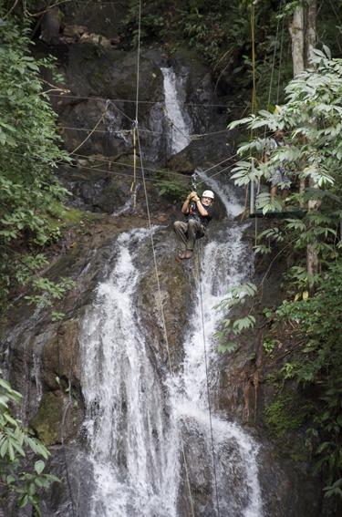 Aerial Tram Rainforest Adventure (17)