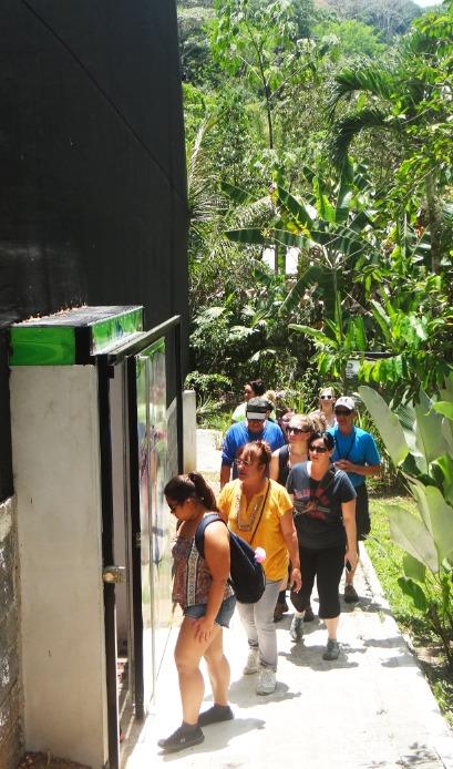 Aerial Tram Rainforest Adventure (34)
