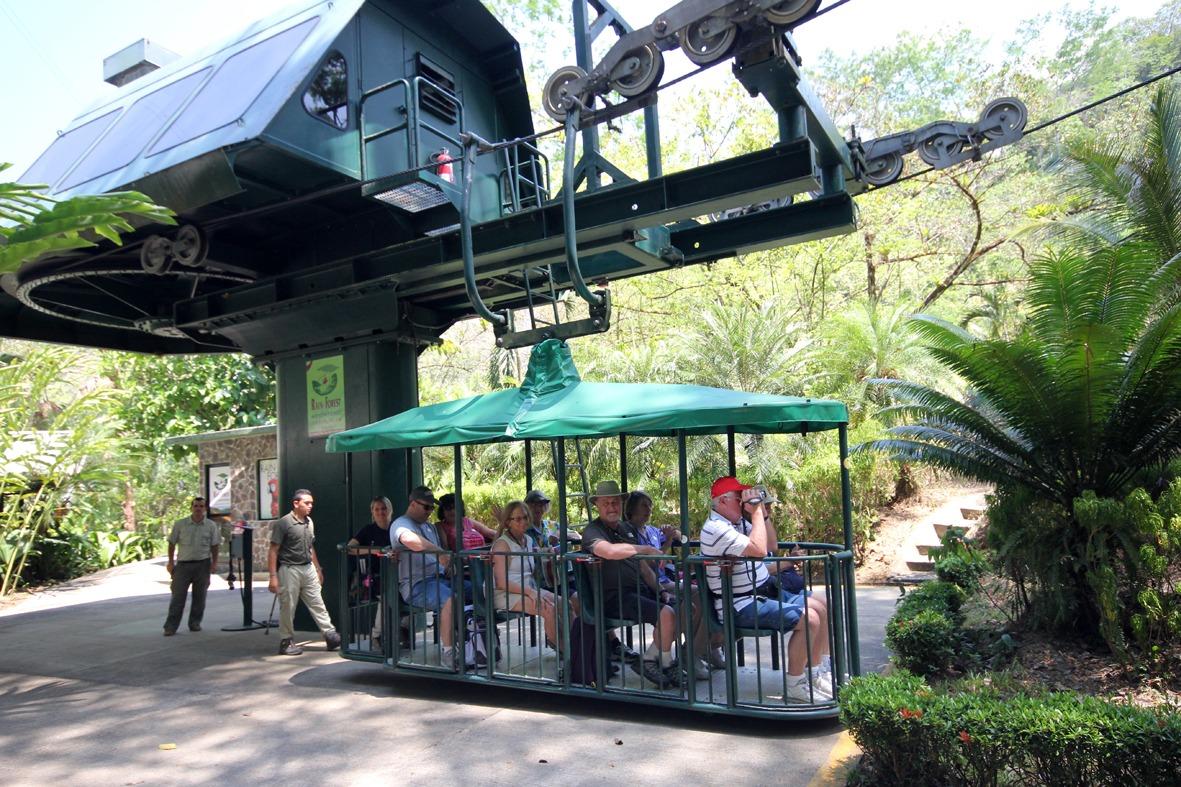 Aerial Tram Rainforest Adventure (41)