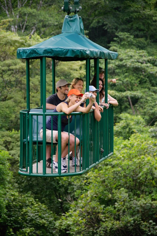 Aerial Tram Rainforest Adventure (42)