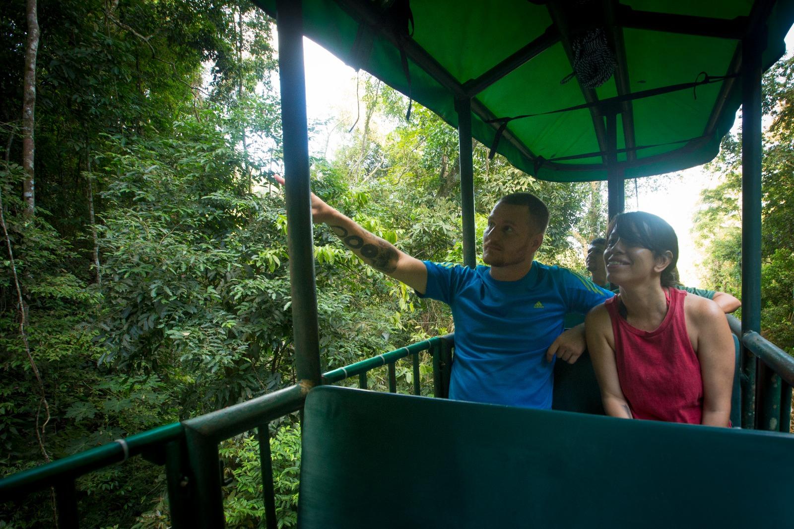 Aerial Tram Rainforest Adventure (5)