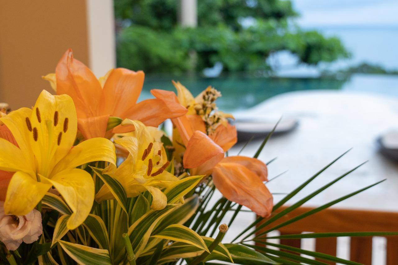 Exclusive Luxury Home Casa Faro Azul (27)