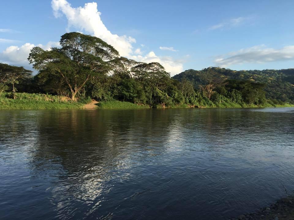 Jungle Crocodile Safari (17)