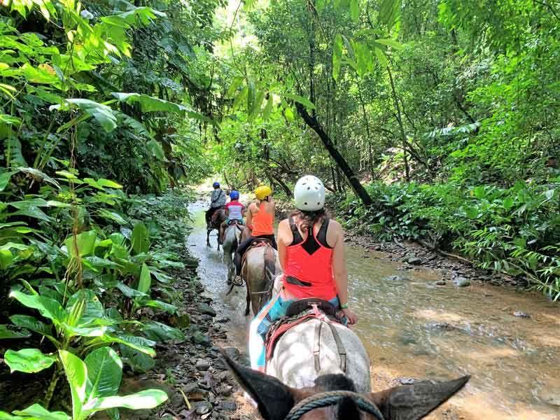 Tocori Waterfalls Horseback Tour (8)