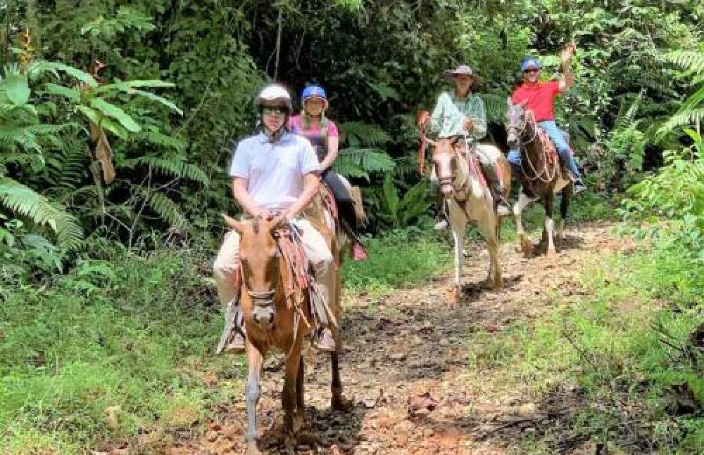 Tocori Waterfalls Horseback Tour