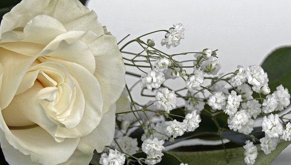 costa-rica-luxury-lifestyle-wedding-2