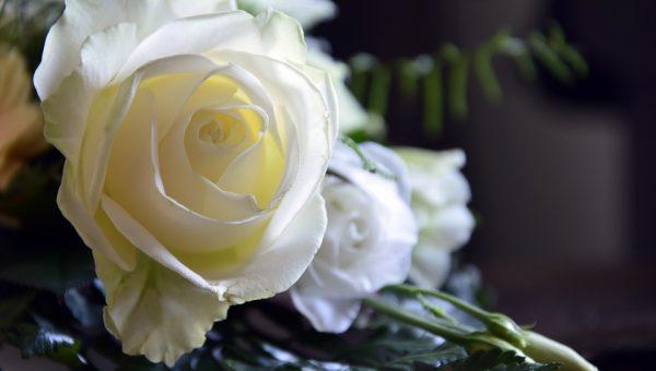 costa-rica-luxury-lifestyle-wedding-5